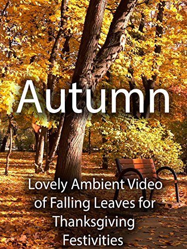 Autumn Lovely Ambient Video of Falling Leaves for Thanksgiving Festivities