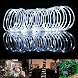 LE 33ft 100 LED Solar Rope Lights, Waterproof Outdoor Rope Lights, 6000K Daylight White, Portable, LED String Light with Light Sensor, Ideal for Wedding, Party, Decorations, Gardens, Lawn, Patio