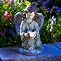 Moonrays 91338 Solar Powered Angel with Glowing Dove Statue LED Light