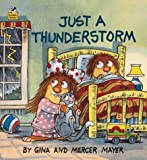 img - for Just a Thunderstorm (A Golden Little Look-Look Book) book / textbook / text book