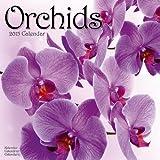 Orchids Calendar - 2015 Wall calendars - Garden Calendars - Flower Calendar - Monthly Wall Calendar by Avonside
