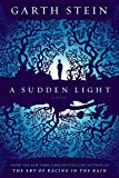 img - for A Sudden Light: A Novel book / textbook / text book