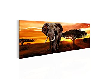 bild kunstdruck prestigeart 0012141a wandbild bilder auf leinwand xxl kunstdrucke african. Black Bedroom Furniture Sets. Home Design Ideas