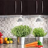 Gladle E27 PAR38 24W 観賞用植物育成LEDライト スポットライト温室効果 室内栽培