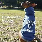 名入れ シティー プルオーバー フーディー ニューヨーク イタリアングレーハウンド服 犬服 (ネイビー×グレー, S)