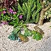 Miniature Fairy Garden Dotted Frog, A…
