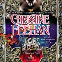 Dark Storm Audiobook by Christine Feehan Narrated by Erik Bergmann, Kristine Ryan