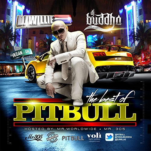 Best of PitBull Mix CD (Limited Edition Cdr) - PitBull