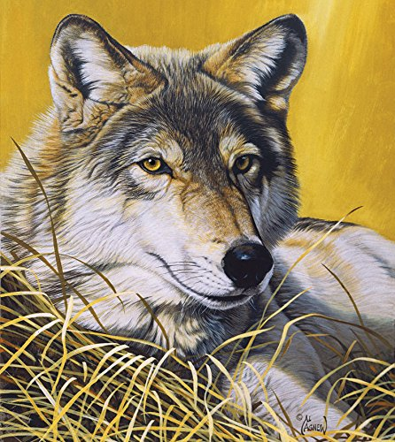 Yellow Eyes - 550 Piece Jigsaw Puzzle By Sunsout Inc.