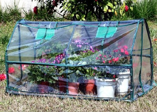 Green-Garden-Hot-House-Mini-Greenhouse-51Wx24Dx20H-GH004-Two-included