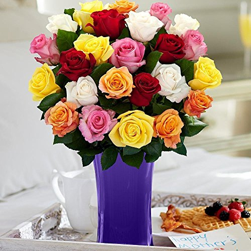 Same Day Flower Delivery of Club Roses   Country Flowers Delivery
