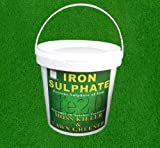 Iron Sulphate