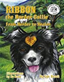 Ribbon the Border Collie