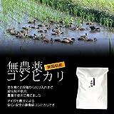 [お歳暮]売れ筋人気ランキングで上常に上位の「お米ギフト」新潟コシヒカリ(アイガモ農法・無農薬米) 3kg
