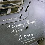A Country Road, a Tree: A Novel | Jo Baker