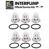 OEM Interpump/GP Kit169 Valve Kit TSF1819, TSF2221, TSF2021, TSF2421, TSF2219