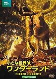 小さな世界はワンダーランド TVオリジナル完全版(2枚組)[DVD]