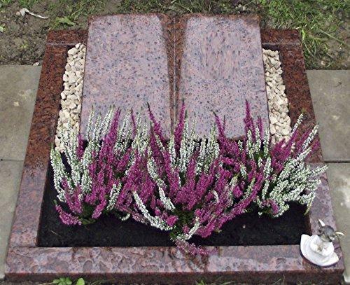 Grabstein Vanga Urnengrabstein Grabmal Granit Grabanlage Grabmal mit Grabumrandung 80cm x 80cm inklusive Grabstein Buch und Gravur