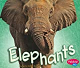 img - for Elephants (African Animals) book / textbook / text book