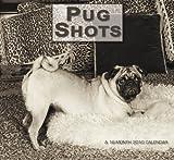 Pug Shots 2010 Calendar