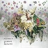Terror & Healing [12 inch Analog]
