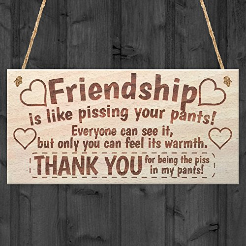 friendship-sign-best-friend-plaque-gift-shabby-chic-heart-thank-you-read-me