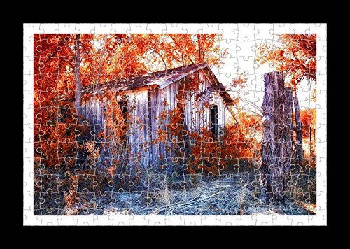 Collins Puzzle (YYP25472) Jigsaw 204 pieces Puzzle with Frame