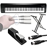 M-Audio Hammer 88   88-Key Hammer-Action USB MIDI Keyboard Controller + Ultimate Support Keyboard Stand + Piano Style Pedal + 'Label a Cable' Pell off Stickers + MIDI Cable- Great M-Audio Bundle