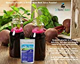1 lb. Premium Organic Beet Root Powder. 100% USDA Certified. More Fiber and Less Sugar than Beet Juice. All Natural Energy Boost, Supports Healthy Liver and Heart. Made in USA . Beetroot.