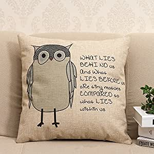 Throw Pillow Covers With Sayings : Amazon.com - Owl Sayings background Decorative cotton blend linen Throw Pillow Covers /Pillow ...