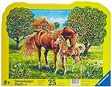 Ravensburger 06397 - Pferde auf der Weide - 25 Teile Kontur-Rahmenpuzzle