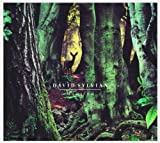 Sylvian, David Manafon Avantgarde/Free