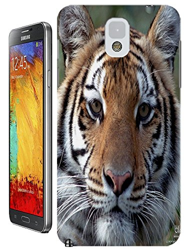 Lovely Power Tigers Cases Covers Phone Hard Back Cases Beautiful Nice Cute Animal Hot Selling Cell Phone Cases For Samsung Galaxy Note 3 # 7
