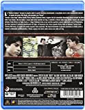 Image de Rocky V [Blu-ray] [Import italien]