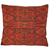 Laura Luna Textiles LL11-195 Chichi Pillow, 20-Inch by 20-Inch