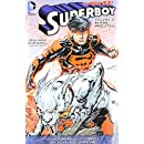 Superboy Vol. 4: Blood and Steel (The New 52)