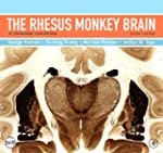 The Rhesus Monkey Brain in Stereotaxi...