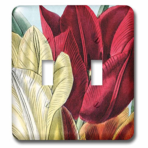PS Vintage - Vintage Tulip Flowers - Light Switch Covers - double toggle switch (lsp_203816_2)