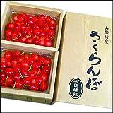 さくらんぼ 佐藤錦 秀品 Mサイズ バラ詰め 1kg (2012お中元サマーギフト)