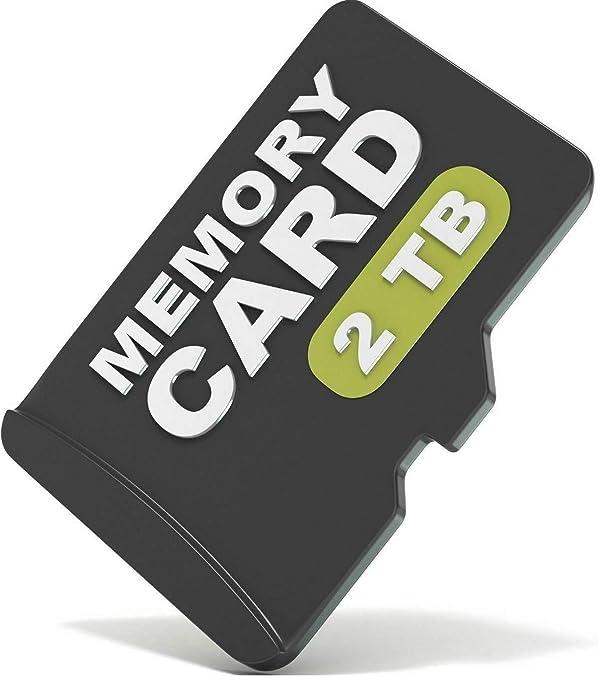 2TB (2048GB) microSD Micro SD SDXC TF Class 10 Flash Memory Card (Color: Black, Tamaño: 2TB (2048GB)