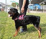 PAWZ Roadペット用品 大型犬 ハーネス 安全ハーネス 咳き込み軽減  胴輪  レッド XL