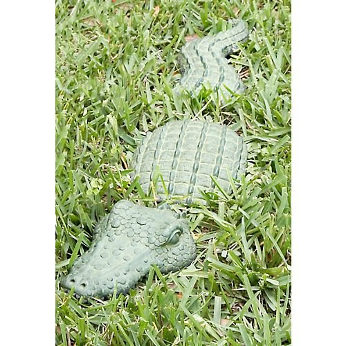 3 Piece Gator Stepping Stones