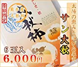 熊本産 高級秋柿 サン太秋 6玉 産地直送