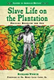 img - for Slave Life on the Plantation: Prisons Beneath the Sun (Slavery in American History) book / textbook / text book