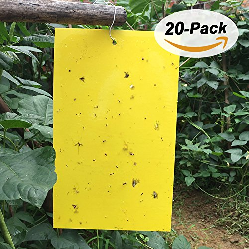 meuxan-20-pack-yellow-sticky-traps-for-whiteflies-fungus-gnats-leaf-miners-aphids-thrips-natural-pes