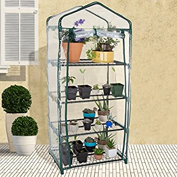 Pure Garden 4 Tier Mini Greenhouse with Cover, 27.5 x 19 x 63