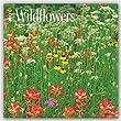 2017 Monthly Wall Calendar - Wildflowers