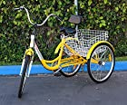 New 6-Speed 24 3-Wheel Adult Tricycle Bicycle Trike Cruise Bike W/ Basket (Yellow)