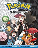 Pokémon Black and White, Vol. 7