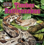 Timber Rattlesnakes (In Winter, Where Do They Go?)
